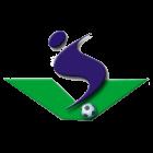 Vezirspor Halı Saha grup logosu